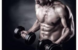 Come aumentare il livello di testosterone